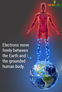 the electrone move freely between the earth and the grounded human body