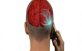 cellphone; mobile;