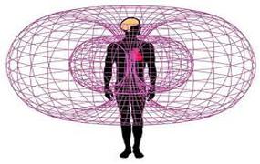 EMF exposure and body health
